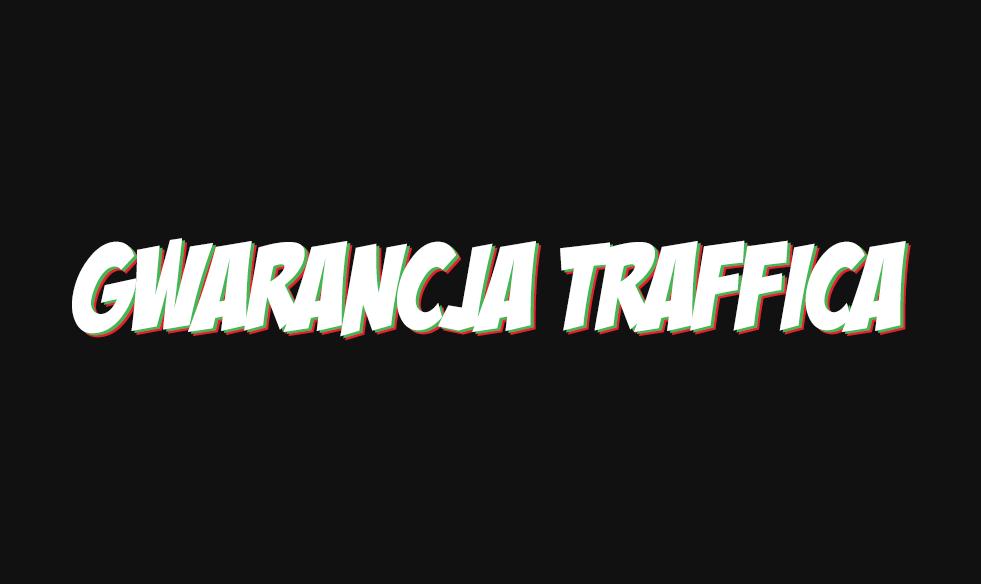 Gwarancja Traffica